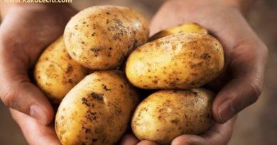 krumpir kakoleciti