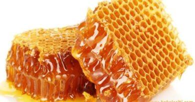 prirodni-med kakoleciti