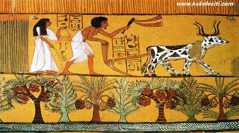 Znanje starih Egipćana